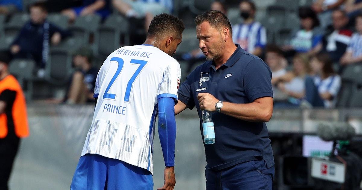 Wer hilft Hertha in Bochum? Pal Dardais wichtiges Personal-Puzzle