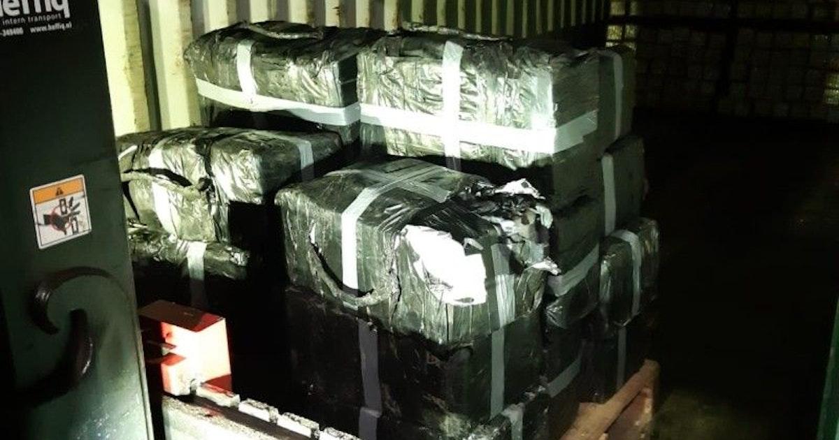 Niederlande: Polizei stellt Kokain für 30 Millionen Euro...